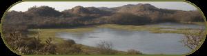 Het Noord-Hollands duinreservaat was onderdeel van een Voortoets Natura 2000